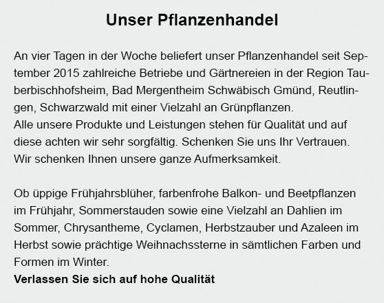 beetpflanzen aus 69151 Neckargemünd