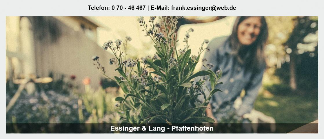 Blumengroßmarkt Siegelsbach - Essinger Lang Pflanzenhandel GbR: Blumenhändler, Floristik Großhandel, Floristikbedarf,